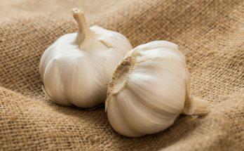 Cara Alami Menjaga Daya Tahan Tubuh Dengan Mengkonsumsi Bawang Putih